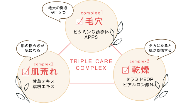 complex1:毛穴, complex2:肌荒れ, complex3:乾燥